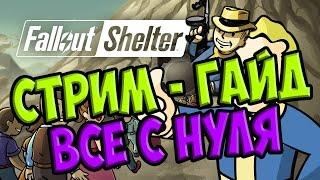 fallout shelter - все с нуля Стрим - гайд