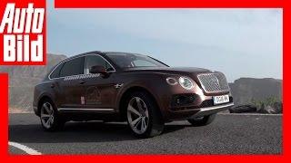 Video: Bentley Bentayga Tour - Das Ziel (17) / Roadtrip / Finale / Test / Drive / Review