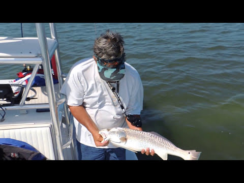 Reel Florida Adventures fishing charters