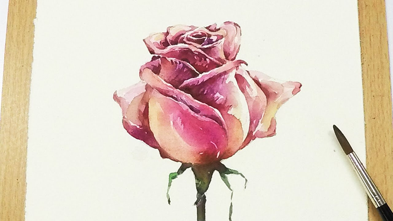 Lvl5 how to paint a rose in watercolor step by step for Watercolor tutorials step by step