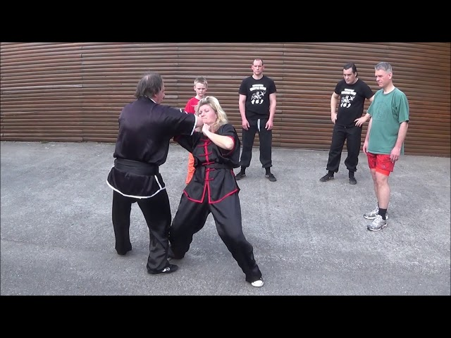 GM Walter Toch with basic workshop Chin Na