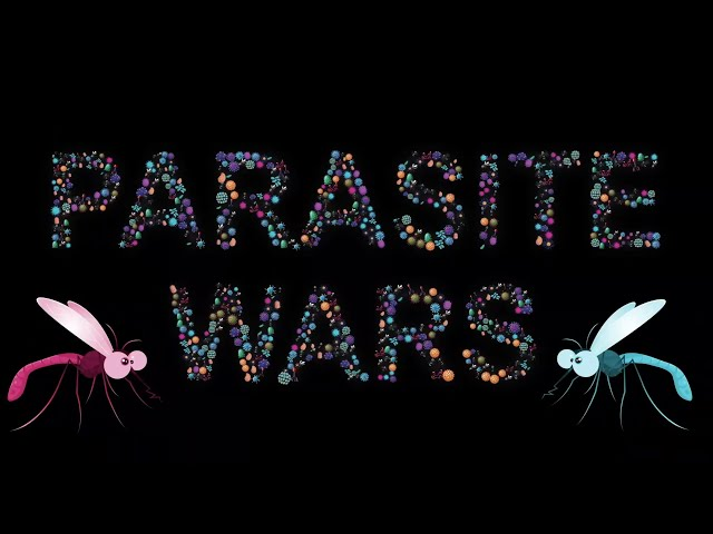 Parasite Wars – Lyric Video