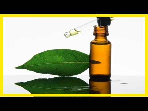 15-surprising-benefits-of-bay-essential-oil