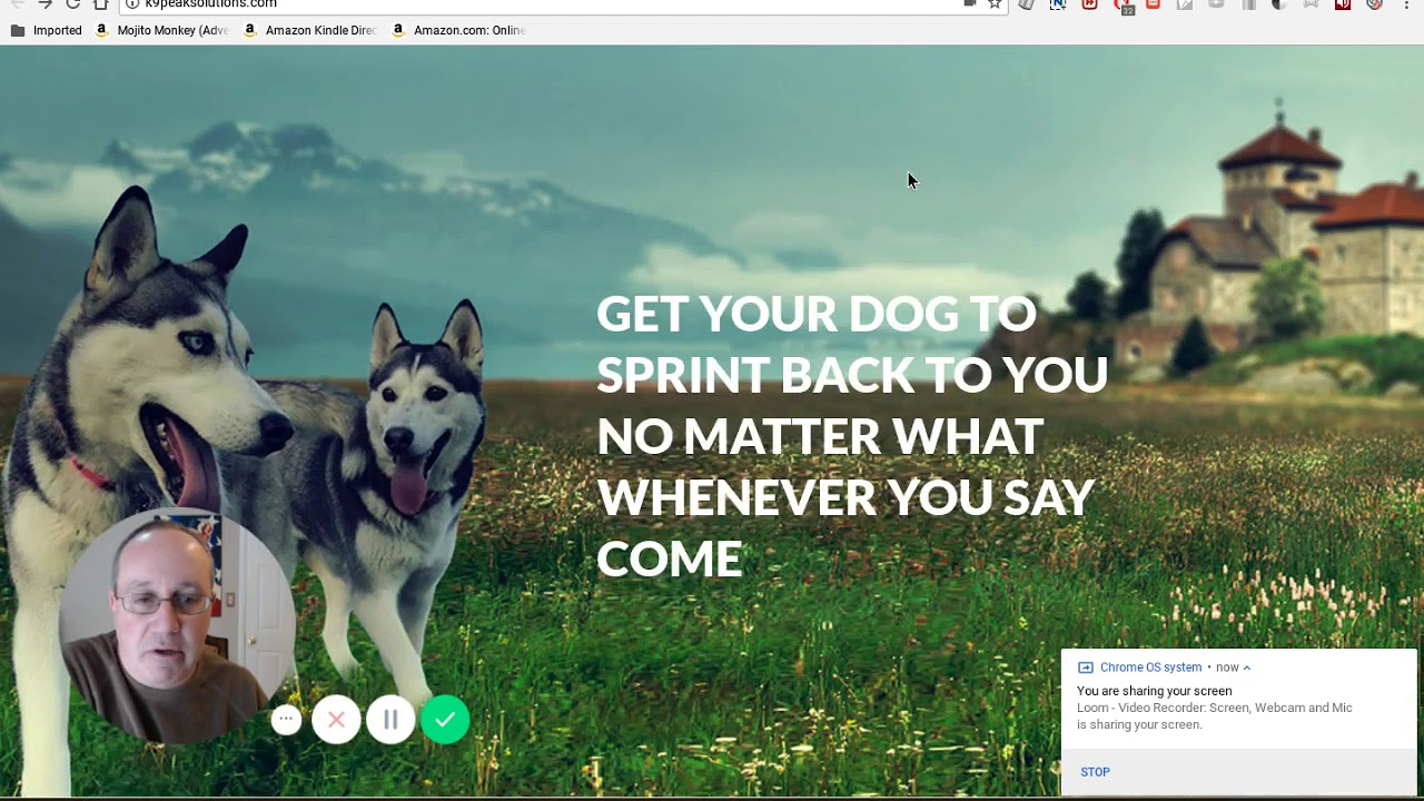 Dog training centers: a selection of sites