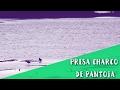 Video de Valle de Santiago
