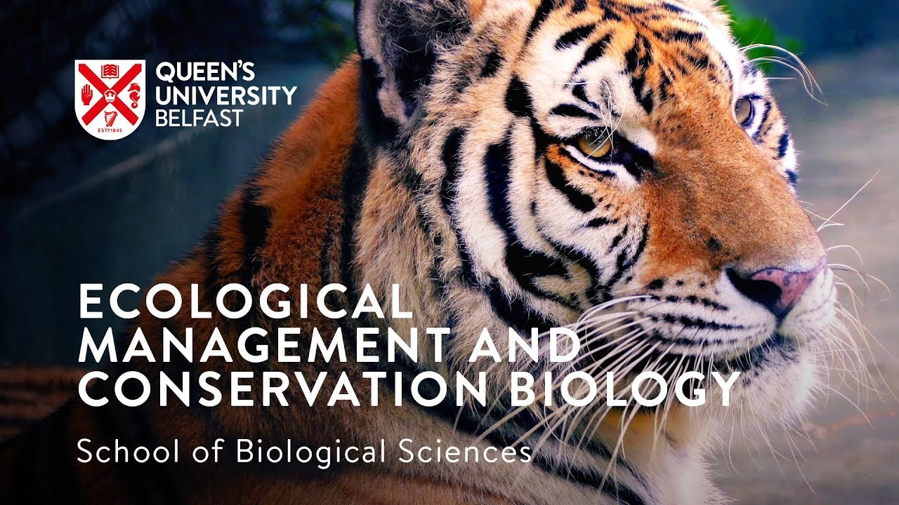 Wildlife Ecology and Management Conservation