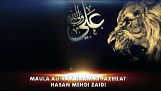 Download Fazeelat e Naam e Maula Ali a.s  (Hasan Mehdi Zaidi) Mp3