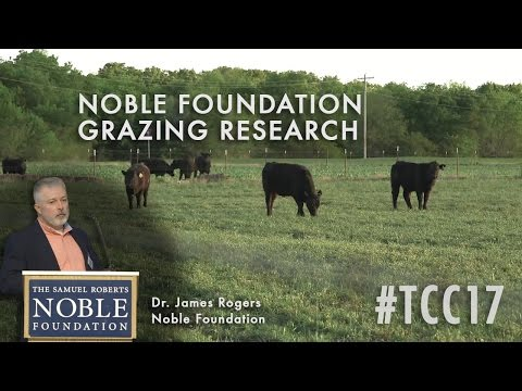 Grazing Research Projects at the Noble Foundation