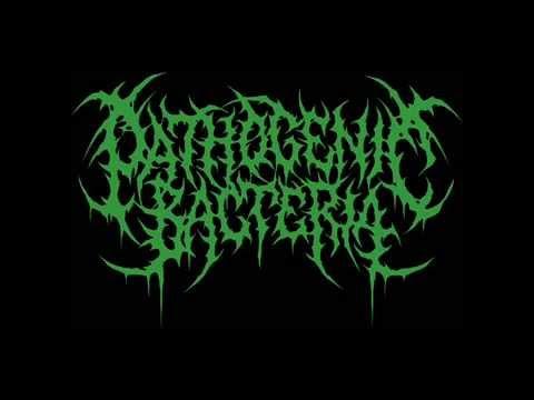 Pathogenic Bacteria   Burial Fetus