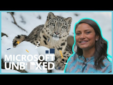 Microsoft Unboxed: How Technology Is Helping Animals | Microsoft Latinx