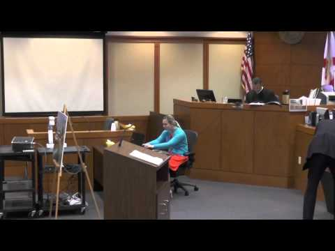 Opening Statements by Matt Powell in a personal injury jury trial