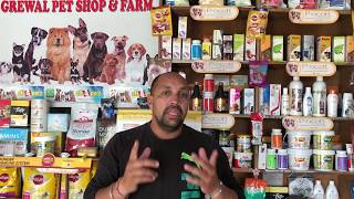 Part 3 - How to Travel Dog in Train - French Mastiff/Dogue de Bordeaux - Bhola Shola