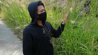 Alan Walker Different World ~ Save The Earth by Sirius Squad