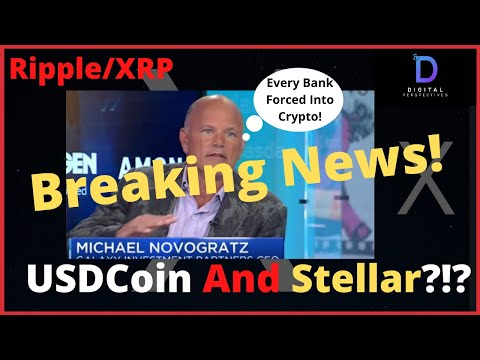 ripple/xrp-mike-novogratz--every-bank-will-be-forced-into-crypto,-usdc-and-stellar-network-news!