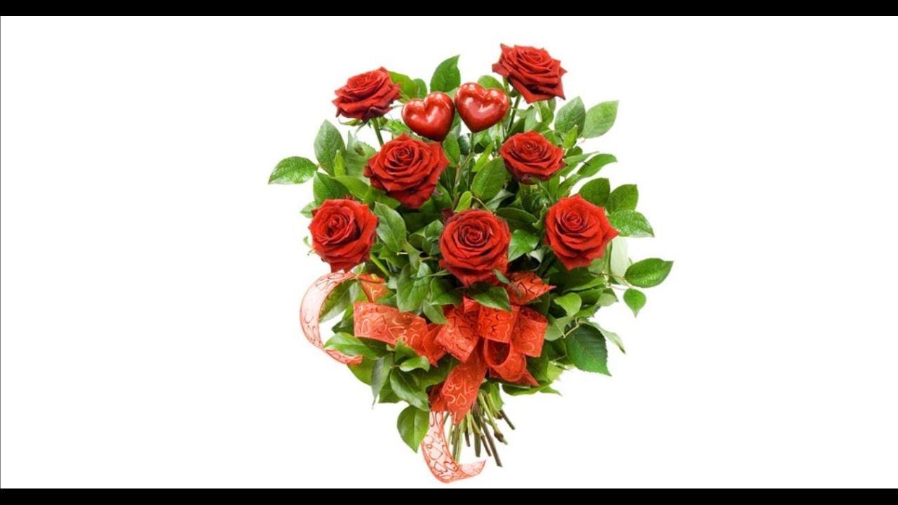 Заказ цветов оптом из голландии без посредников заказ рассады цветов почтой