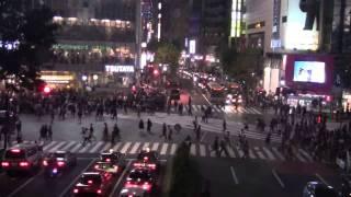 9 Days in Tokyo