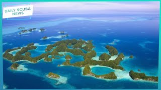 Palau Sunscreen Ban Comes Into Effect | Daily Scuba News (w/ Hollie)