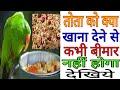 तोता को क्या खिलाना चाहिए की कभी बीमार ना हो ? Parrot healthy food ! देखिए in Hindi