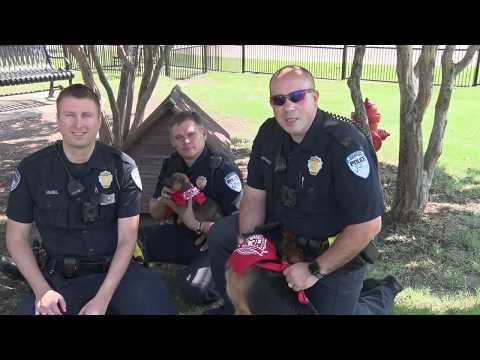 Richardson PD - Dog Walker Watch