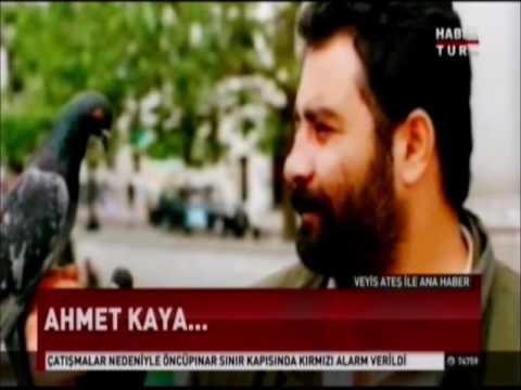 Haber Bültenleri (16 Kasım 2016)