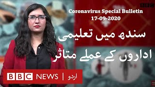 Coronavirus Special Bulletin - 17 September 2020: Staff in 2 colleges in Sindh test positive