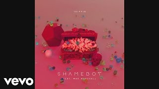 Shameboy - Trippin ft. Max Marshall