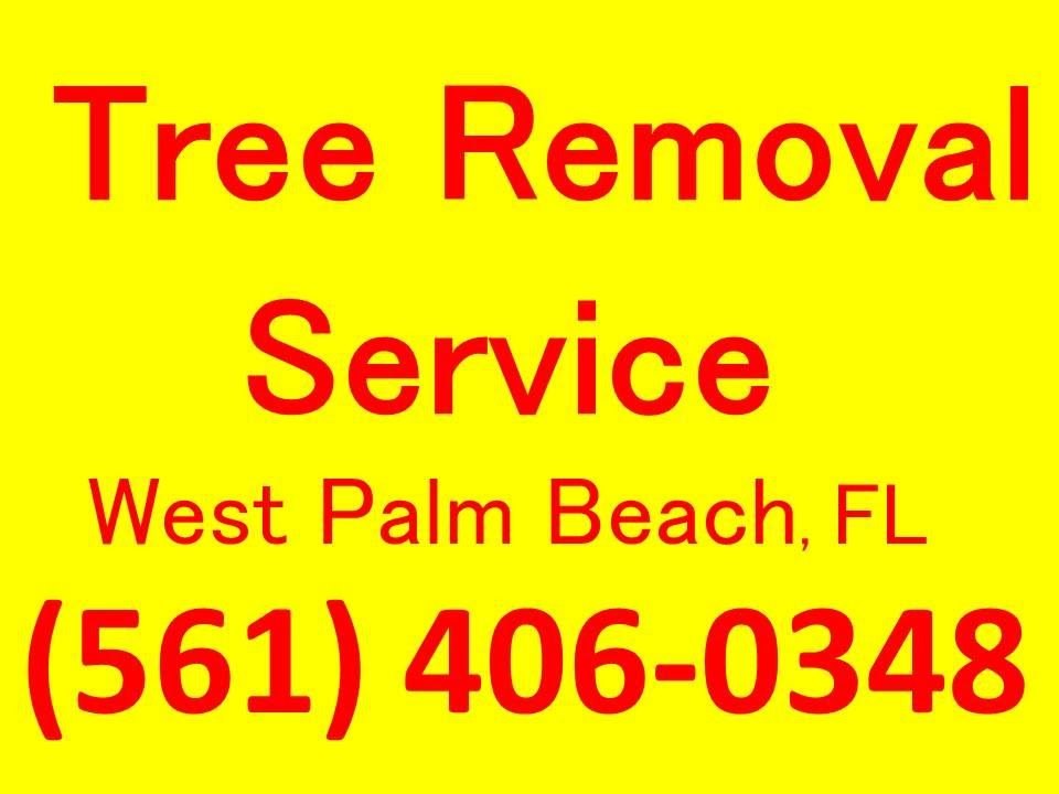 tree removal service west palm beach  fl