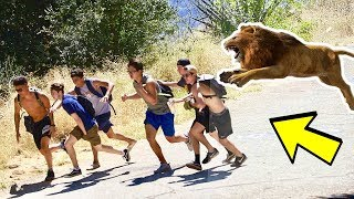 Escaped Lion in the Woods Prank! (GIVING HIKERS A HEART ATTACK) | Must Watch!
