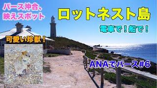 電車で!船で!インド洋に浮かぶ島、ロットネスト島へ。[ANAでパース #6]
