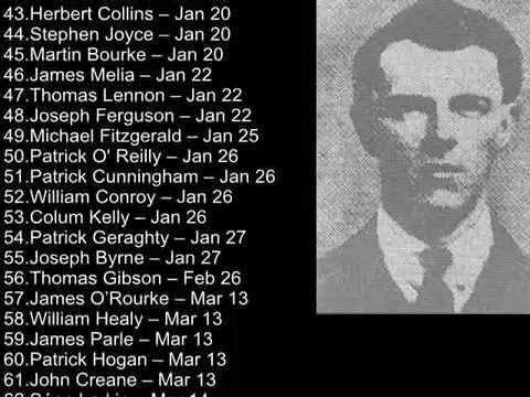 Roll of Honour - Irish Civil War