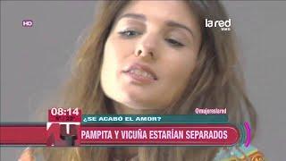 La verdadera historia de Pampita y Benja Vicuña