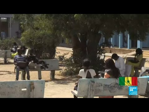 Lack of Arabic education oversight exposes Senegal's youths to radicalisation
