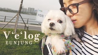 은정이의 브이로그 '스튜디오K 홍혜진 디자이너와 데이트, 커피하우스 촬영 때의 추억! 정민,현유 언니들과 만남, 몽글이와 한강공원 산책' l Eunjung Official