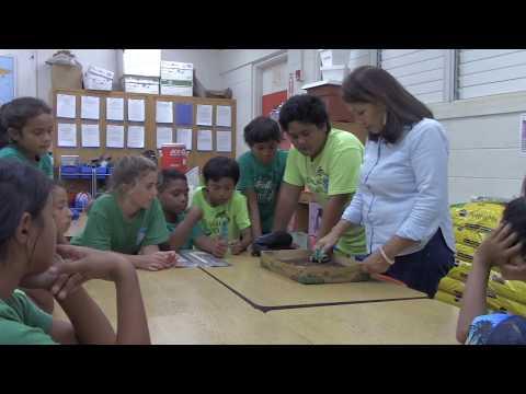 Molokai Homestead Farmers Alliance - Kaunakakai Elementary School