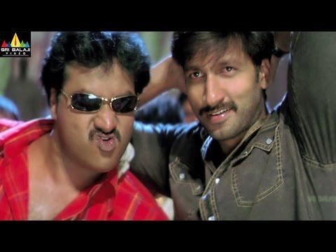 Andhrudu Telugu Movie Part 10/13 | Gopichand, Gowri Pandit | Sri Balaji Video