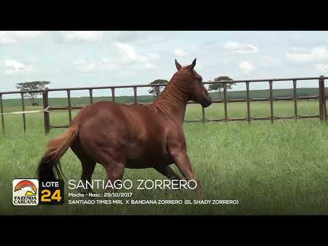 LOTE 24 - SANTIAGO ZORRERO