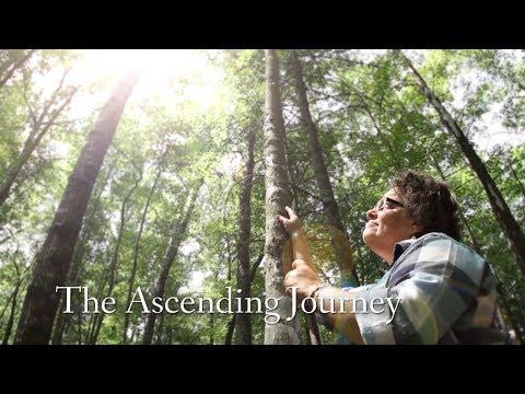 The Ascending Journey (Full Documentary)