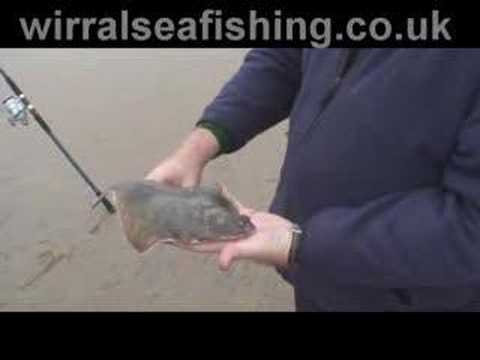 Wirral Sea Fishing Video
