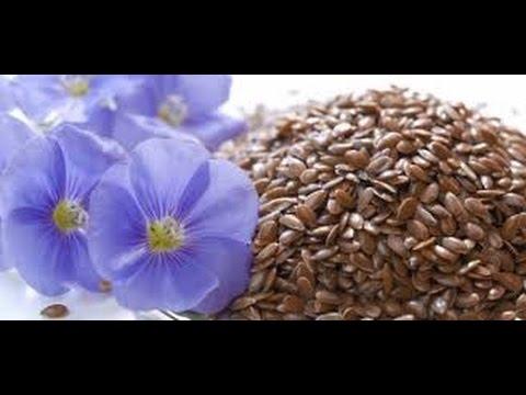 Health benefits of Flax Seeds(Hindi), Alsi के फ़ायदे, Flax ...  |Flax Seed In Hindi