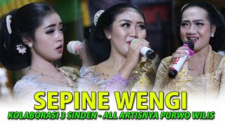 Download Lagu SEPINE WENGI || ALL ARTIS || CS.PURWO WILIS mp3