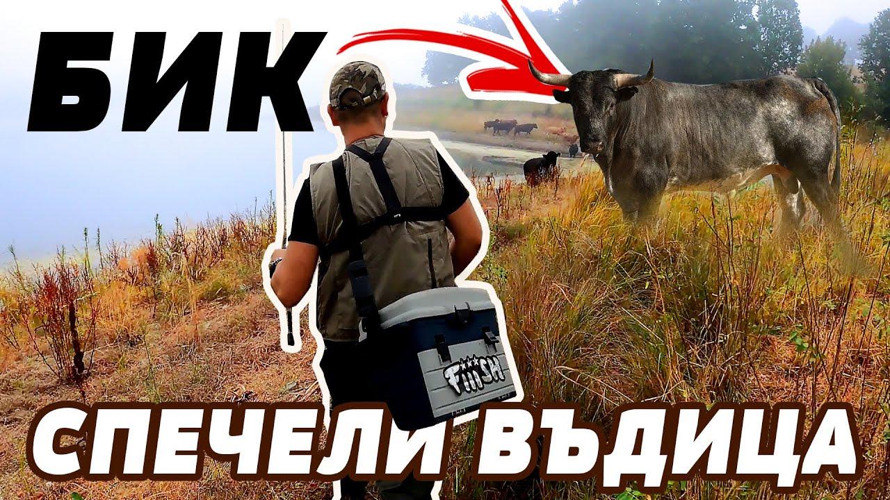 ОПС ПОПАДНАХМЕ В СТАДО на БИК!!! Риболов на щука, костур и попчета на Малко Шарково и Черноморец