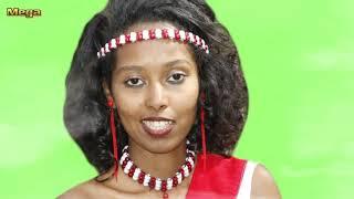 Download Ittiqaa Tafarii **NEW **Oromo Music 2017 MP3 song and Music Video