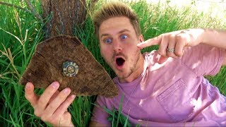 MYSTERY BOX IN THE WOODS! *found*