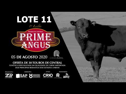 LOTE 11    BLACK OPAL TE894  RIB EYE Prod  Agência El Campo