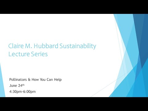 Hubbard Sustainability Series - Pollinators & How You Can Help