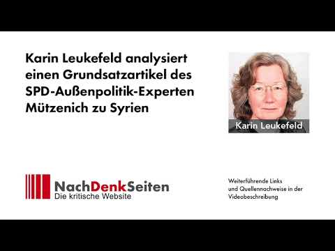 Syrien: Karin Leukefeld analysiert einen Grundsatzartikel des SPD-Außenpolitik-Experten Mützenich