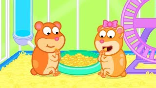 Lion Family Hamster was Released Cartoon for Kids thumbnail