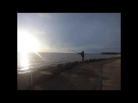 Anyfish Anywhere Tournament Match Pro - Fishing Cast