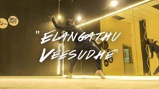 Elangaathu Veesudhe - Ilayaraja dance | Elavarasan Freestyle | BFAB