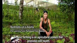 The Learning Farm Indonesia - Sowing the seeds of change_5'